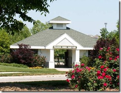 Swim Club crop square